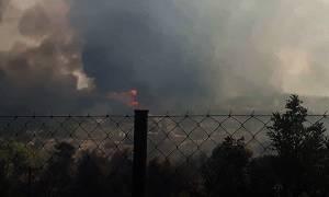 Μαίνεται η φωτιά στο Λαγονήσι - Κάηκαν σπίτια και αυτοκίνητα