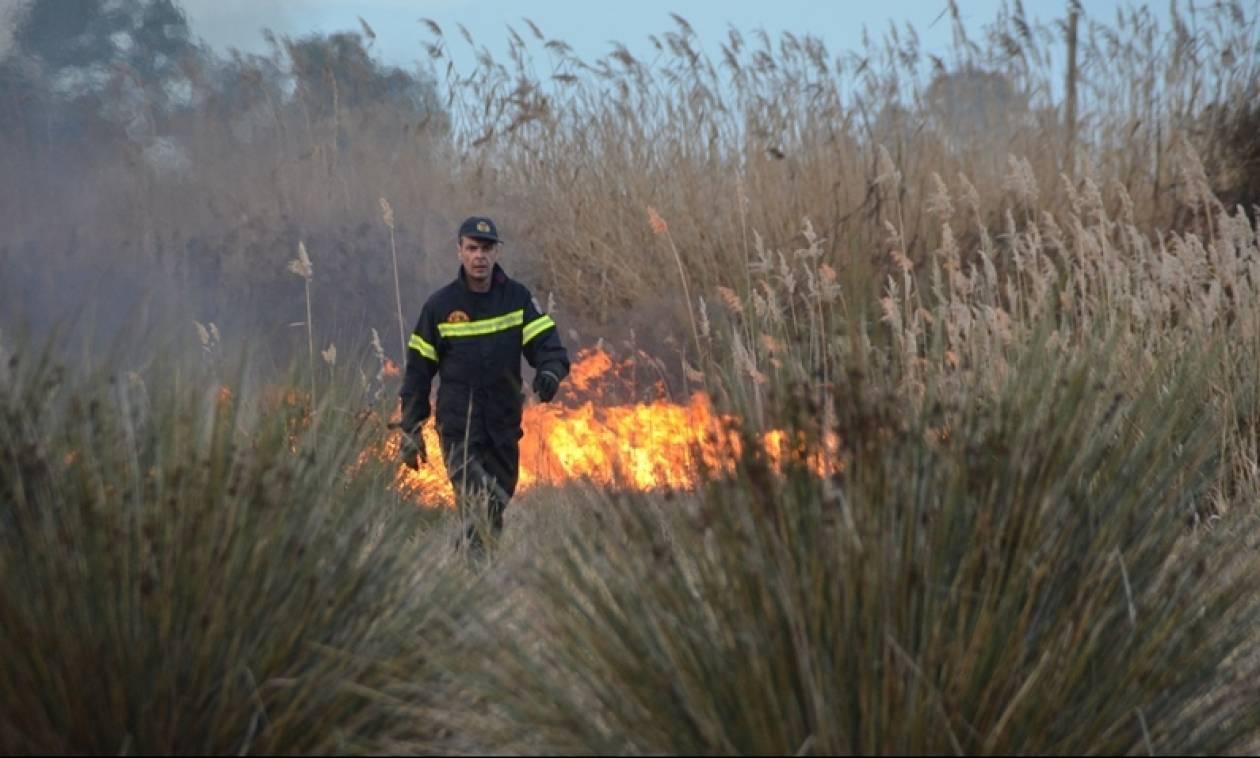 Πυρκαγιά στο Γεράκι Ηλείας