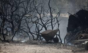 «Κρανίου τόπος» η Ανάβυσσος – Τρεις πυροσβέστες στο νοσοκομείο, κάηκαν σπίτια και οχήματα