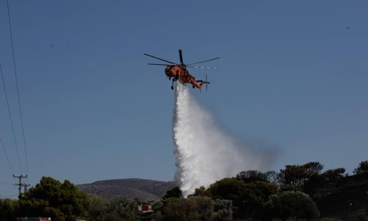 Θεσσαλονίκη: Υπό μερικό έλεγχο η πυρκαγιά στη Νέα Καρβάλη Καβάλας