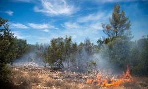 Η Ιταλία αντιμέτωπη με καύσωνα και καταστροφικές πυρκαγιές - Ένας νεκρός