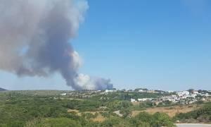Φωτιά Κύθηρα: Ολονύχτια η μάχη με τις φλόγες - Ποια η εικόνα σήμερα