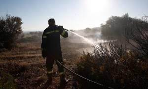 Υπό μερικό έλεγχο η φωτιά στο Ίλιον Αττικής
