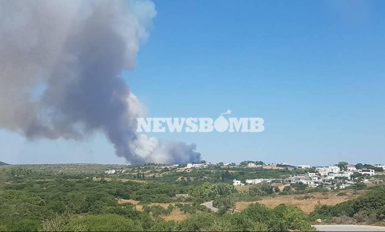Φωτιά Κύθηρα: Αναζωπυρώθηκε η μεγάλη πυρκαγιά - Εκκενώθηκε οικισμός