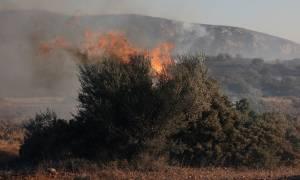 Φωτιά μαίνεται στην Αιτωλοακαρνανία