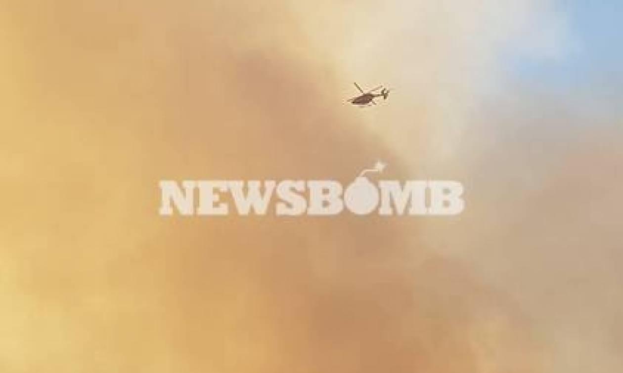 Φωτιά Κύθηρα - Πυροσβεστική: «Τα εναέρια μέσα δεν μπορούν να παραμένουν στο αεροδρόμιο του νησιού»