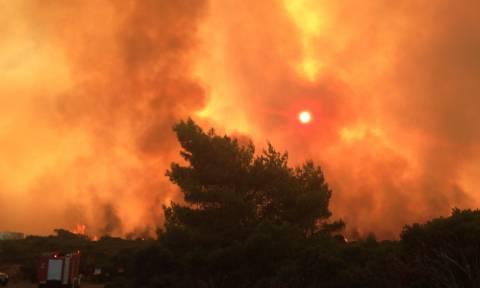 Βιβλική καταστροφή στα Κύθηρα: «Βοήθεια! Καιγόμαστε, σώστε μας» φωνάζουν οι κάτοικοι