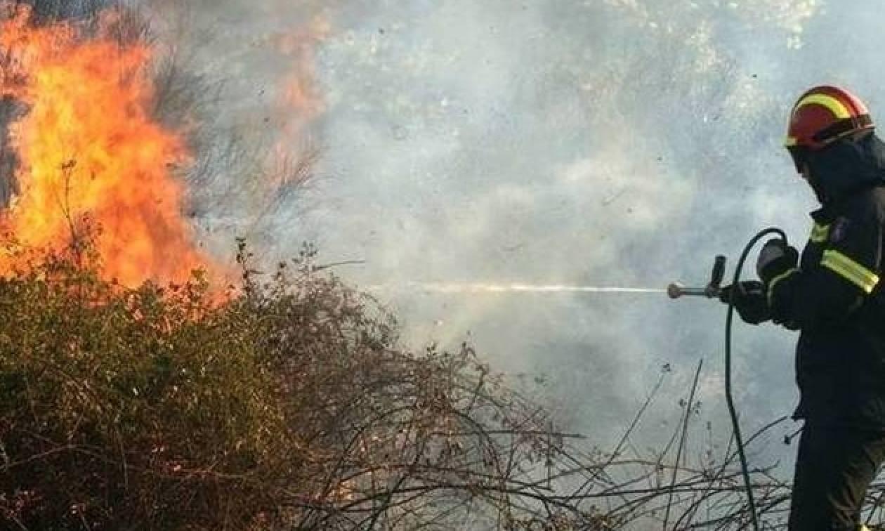 Φωτιά ΤΩΡΑ στο Μενίδι - Κοντά σε σπίτια οι φλόγες