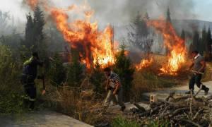 Κόλαση φωτιάς στα Κύθηρα: Εκκενώνεται η Μονή της Παναγίας Μυρτιδιώτισσας