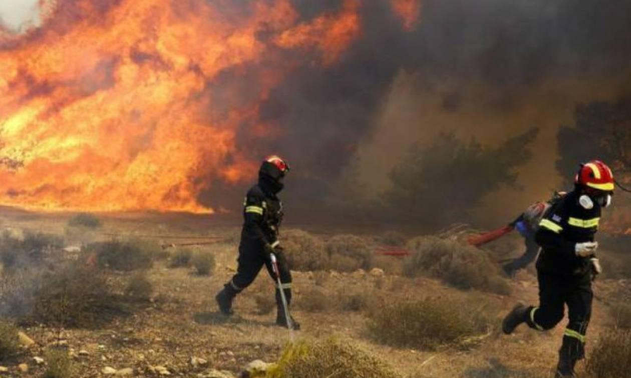 Συγκλονιστική ομολογία εμπρηστή: Έβαζα φωτιές για να εμφανίζομαι μετά ως εθελοντής πυροσβέστης