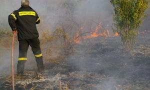Φωτιά στο Μενίδι: Με αυτοθυσία των πυροσβεστών σώθηκαν τα σπίτια