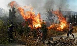 «Κόλαση» φωτιάς στα Κύθηρα: Τεράστια καταστροφή στο νησί - «Στάχτη» 20.000 στρέμματα