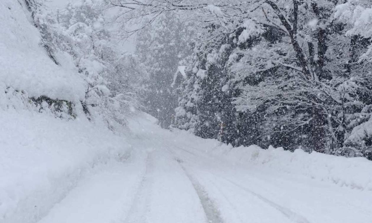Αποτέλεσμα εικόνας για χιονι φωτογραφιες