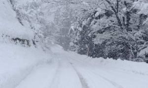 Καιρός – καύσωνας: Κι όμως! Υπάρχει ένα μέρος στην Ελλάδα που έχει... χιόνι! Δείτε τις φωτογραφίες