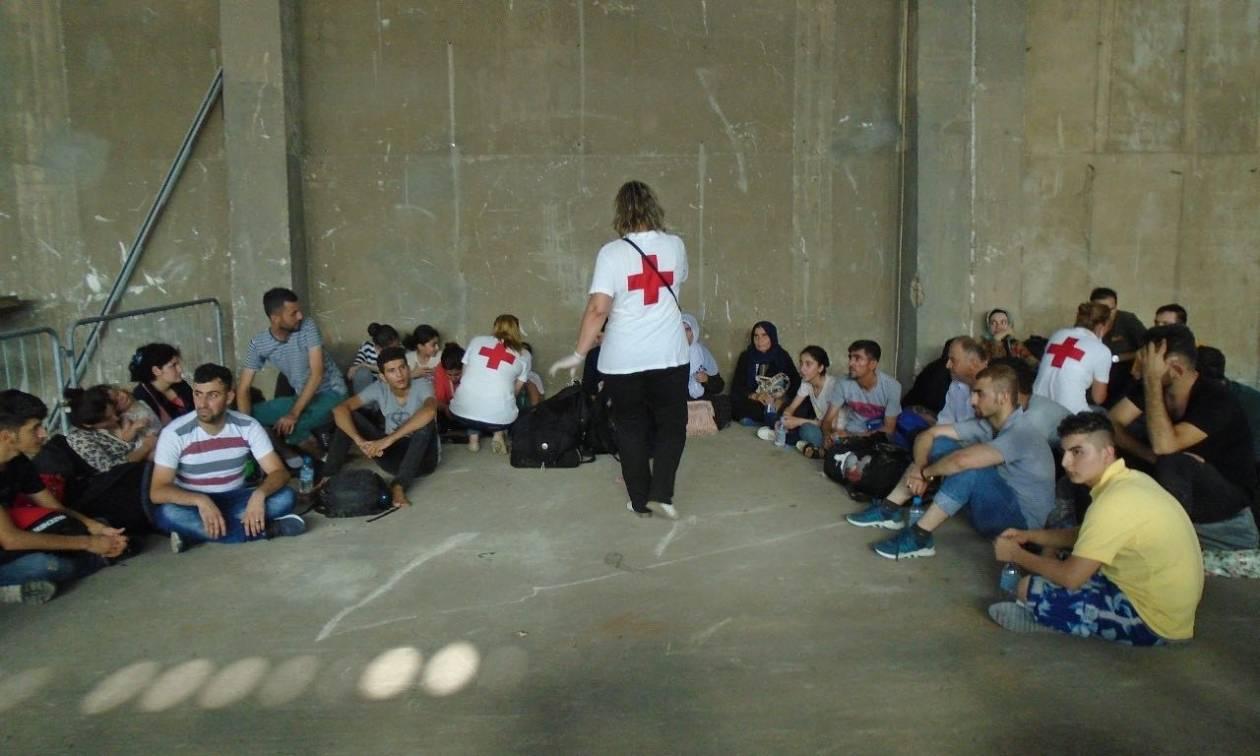 Καλαμάτα: Ο Ελληνικός Ερυθρός Σταυρός στην υποδοχή και φροντίδα προσφύγων
