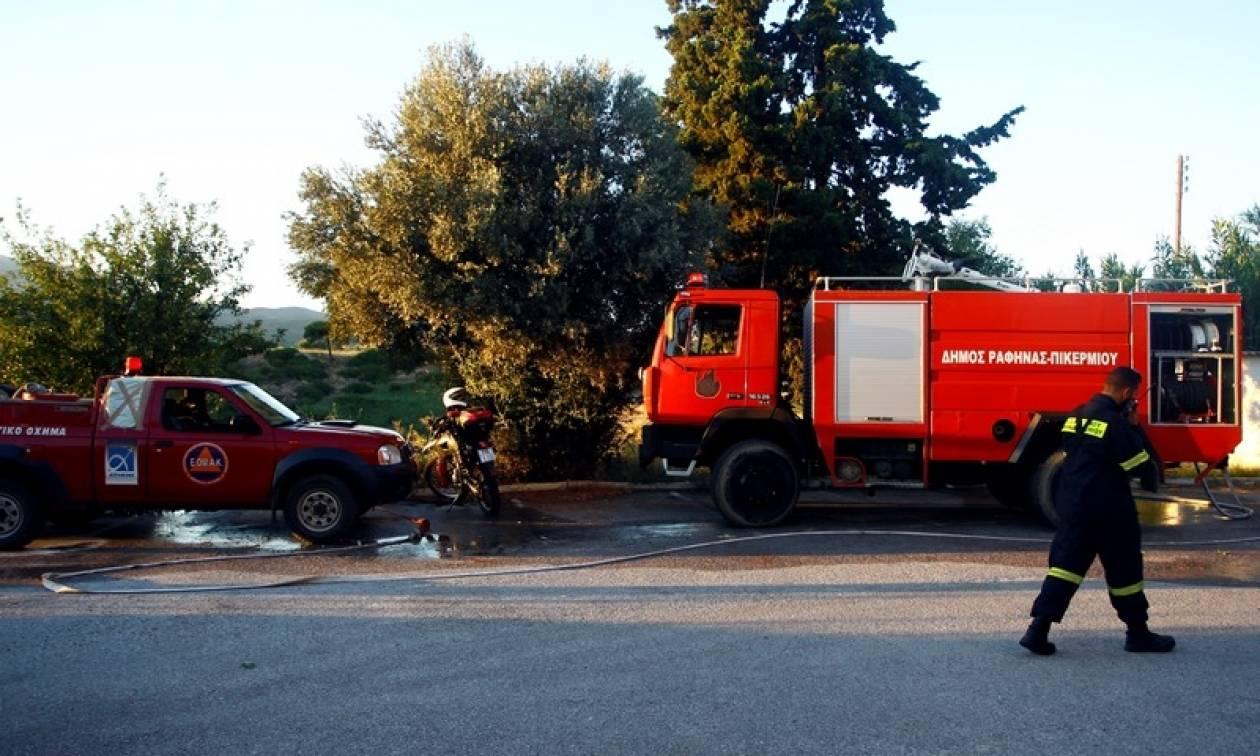 Πορτοκαλί συναγερμός στην Πυροσβεστική: Πολύ υψηλός κίνδυνος για πυρκαγιά - Δείτε πού