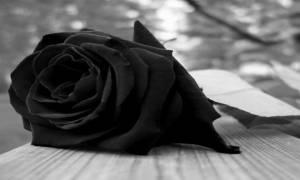 Ανείπωτη θλίψη: Πέθανε ο Γιώργος Αποστολάκης