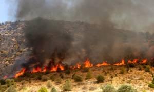 Πύργος: Σύλληψη γυναίκας για πυρκαγιά από αμέλεια