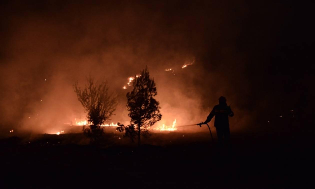 Πύρινος εφιάλτης πάλι στο Γαλάτσι: Φωτιά στο Άλσος Βεΐκου