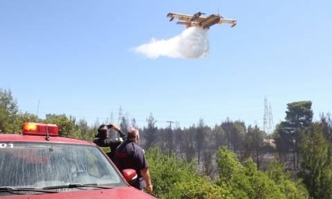 Πορτοκαλί συναγερμός! Ο χάρτης πρόβλεψης κινδύνου πυρκαγιάς για την Τετάρτη 9/8 (pics)