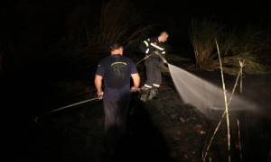 Εμπρησμός από πρόθεση η φωτιά στο Άλσος Βεΐκου - Σε επιφυλακή η Πυροσβεστική Υπηρεσία