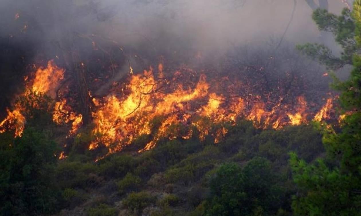Ζάκυνθος: Μάχη των πυροσβεστών με τις φλόγες στις Μαριές - Νέο μέτωπο κοντά στο χωριό