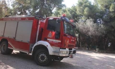 Πορτοκαλί συναγερμός! Ο χάρτης πρόβλεψης κινδύνου πυρκαγιάς για την Πέμπτη 10/8 (pics)