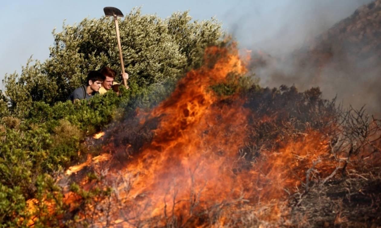 Φωτιά ΤΩΡΑ: Πυρκαγιά μαίνεται στην Πρέβεζα