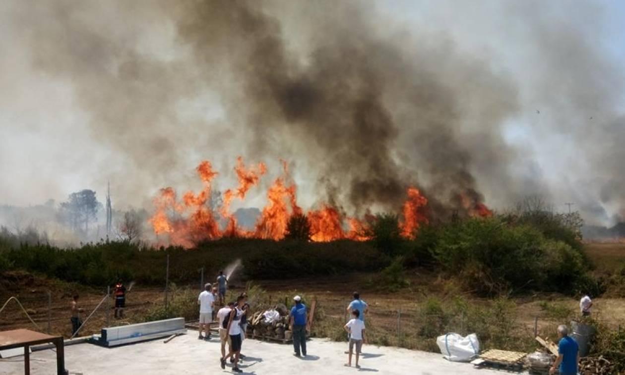 Πρέβεζα: Μεγάλη φωτιά έφτασε κοντά στα σπίτια (pics)