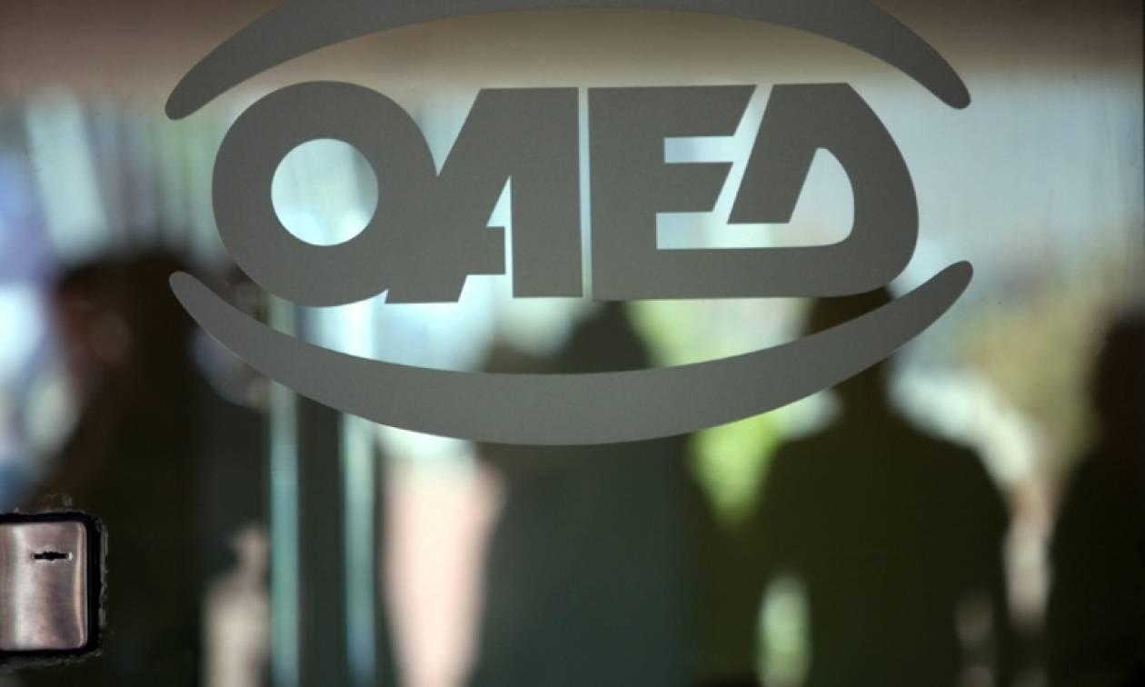 ΟΑΕΔ: Όλα τα προγράμματα για 45.503 θέσεις εργασίας έως το τέλος του 2017