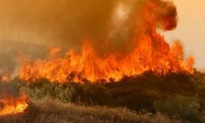 Κόλαση φωτιάς! Στις φλόγες τα χωριά της ελληνικής μειονότητας στην Αλβανία