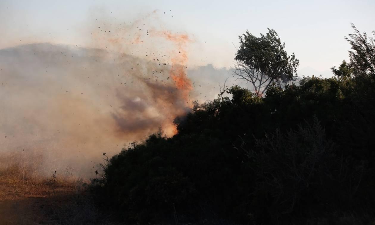 Φωτιά σε εξέλιξη στην Ιεράπετρα