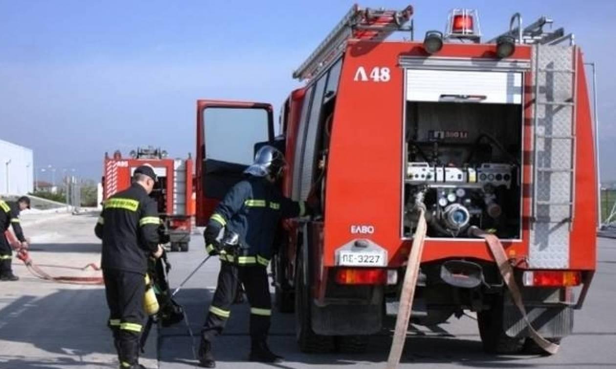Κοζάνη: Αυτοκίνητο τυλίχτηκε στις φλόγες στα διόδια Πολυμύλου (vid)