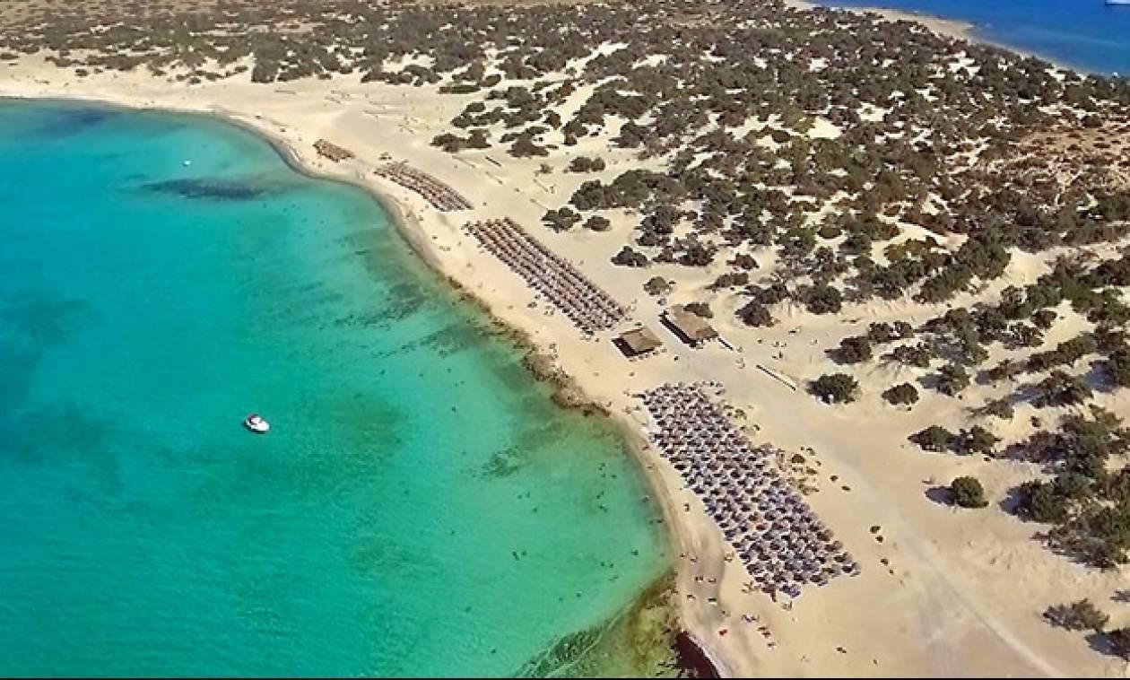 Γαϊδουρονήσι ή Χρυσή: Ο νοτιότερος παράδεισος της Ευρώπης βρίσκεται στη Κρήτη!