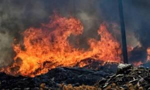 Φωτιά Ζάκυνθος: Η σοκαριστική φωτογραφία που «γκρέμισε» το Διαδίκτυο (pic)