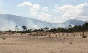 Φωτιά Ζάκυνθος: Νέο πύρινο μέτωπο στο χωριό Καλαμάκι
