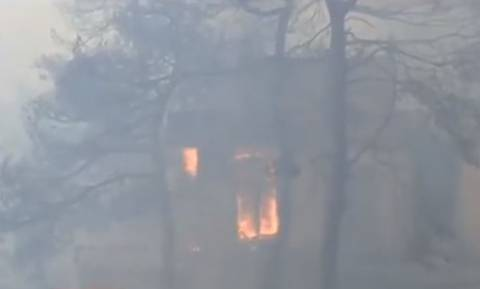 Φωτιά Κάλαμος: Σπίτια έγιναν «στάχτη» - Τι καταγγέλλουν οι κάτοικοι (vid)