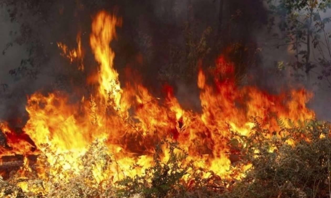 Φωτιά ΤΩΡΑ στην Κέρκυρα