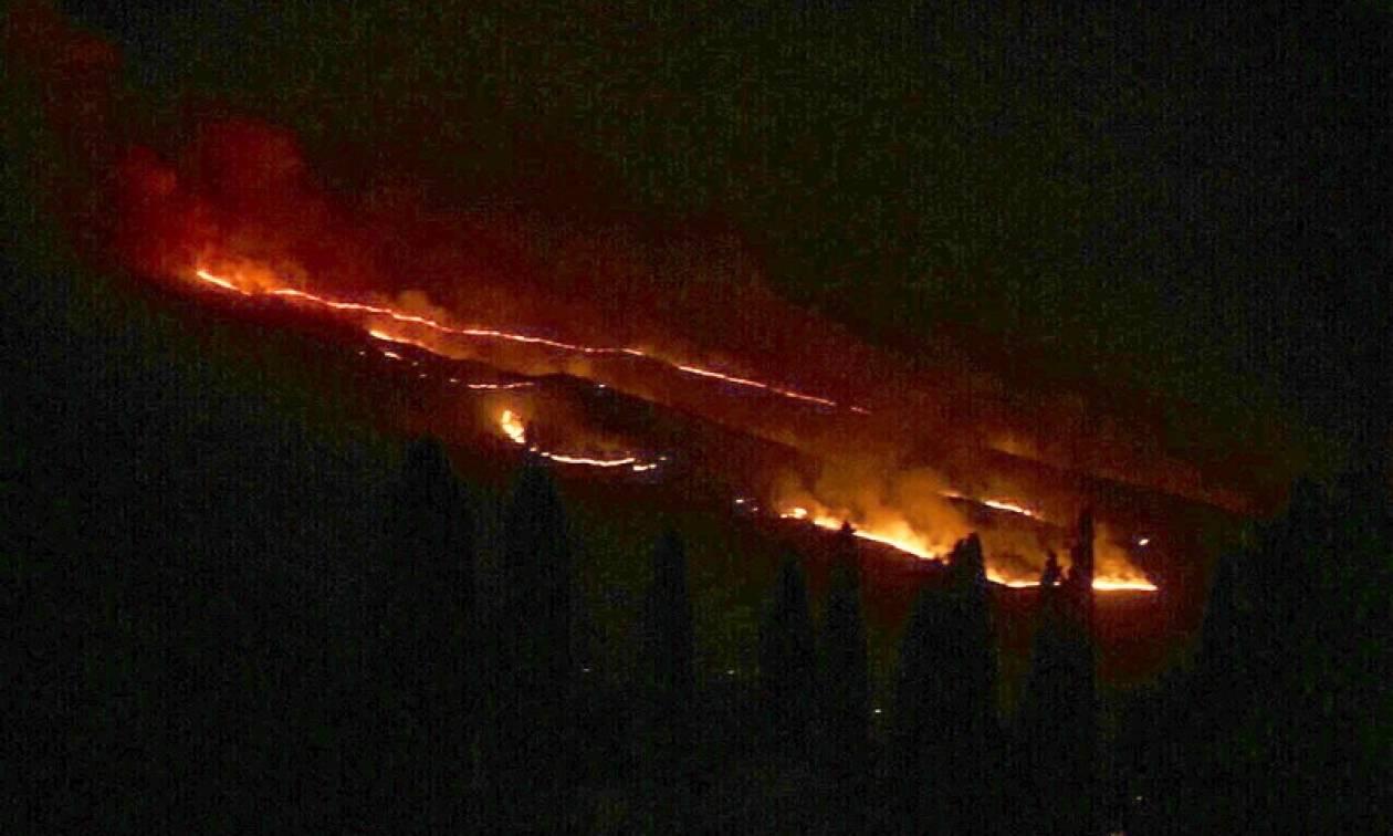 Φωτιά ΤΩΡΑ: Τρεις πυρκαγιές ξέσπασαν στην Κεφαλονιά!