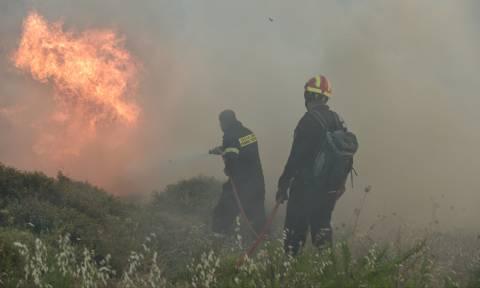 Φωτιά Κάλαμος - Κραυγή αγωνίας: «Θα καούμε ζωντανοί!» (vid)