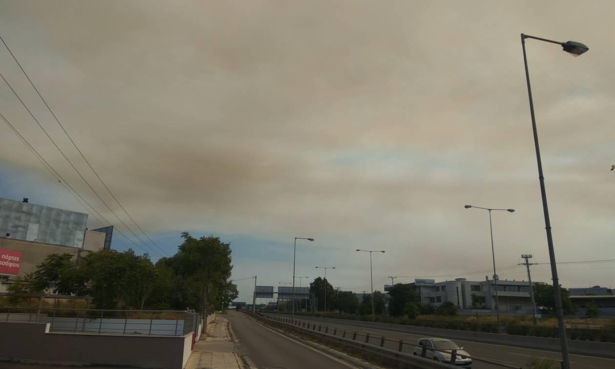 Φωτιά Κάλαμος - Συγκλονιστικές φωτογραφίες: Οι καπνοί «έπνιξαν» τα βόρεια προάστια της Αθήνας