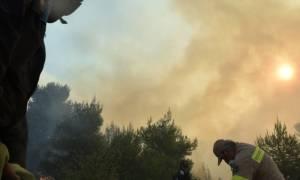Φωτιά Κάλαμος: Η φωτογραφία του πυροσβέστη που συγκλονίζει