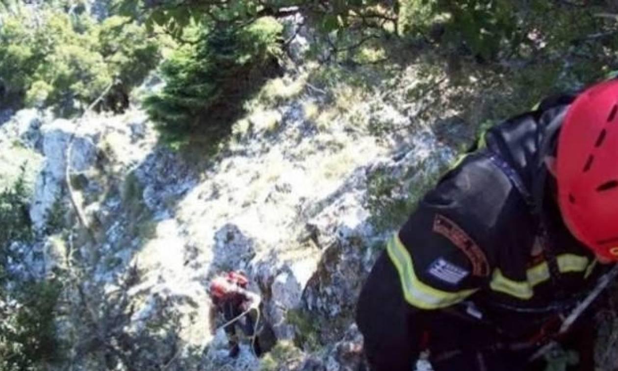 Χανιά: Απίστευτο περιστατικό: Ομάδα διάσωσης έψαχνε τουρίστες και εκείνοι…