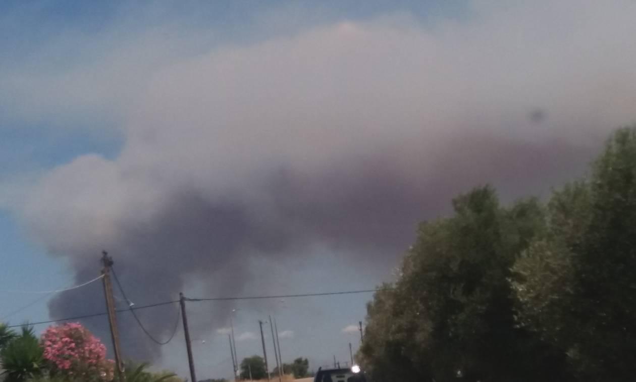 Φωτιά στην Αμαλιάδα: Αρνούνται οι κάτοικοι να εγκαταλείψουν το χωριό Ανάληψη (pics)