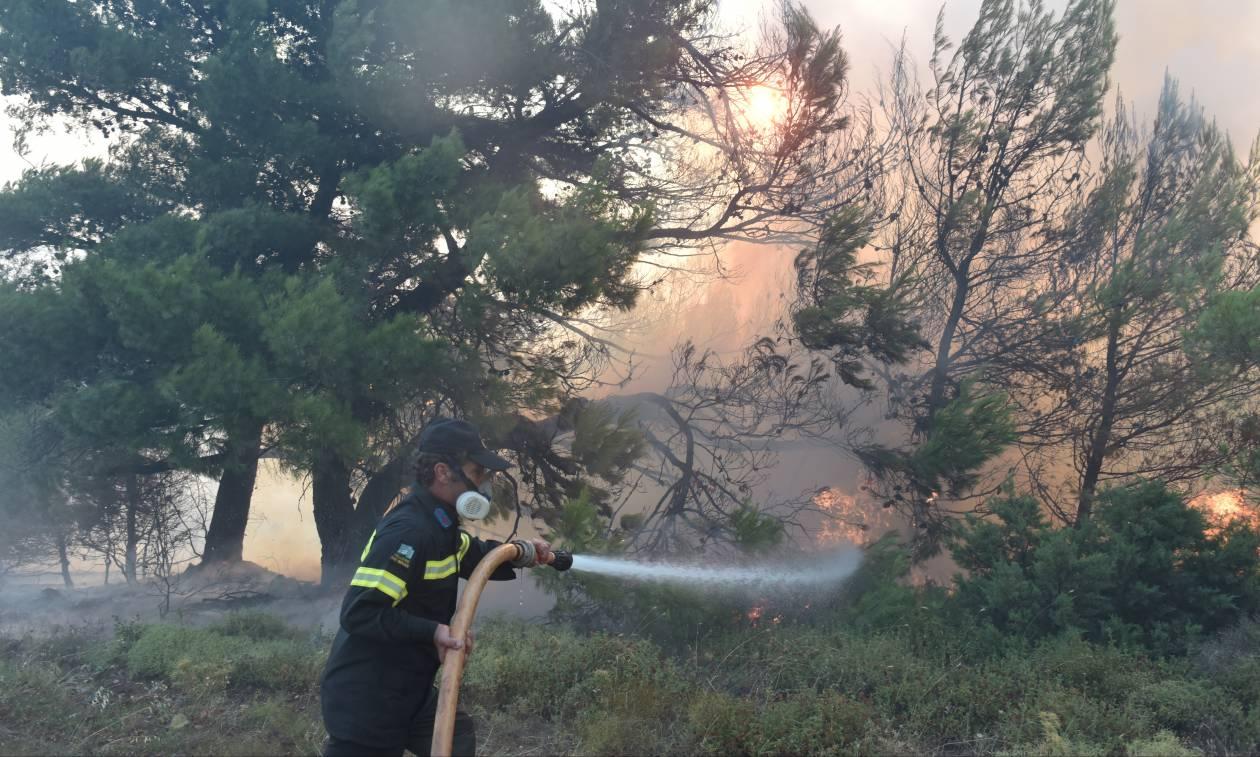 Φωτιά Κάλαμος LIVE: Αυτός είναι ο λόγος που επεκτάθηκε γρήγορα η καταστροφική πυρκαγιά