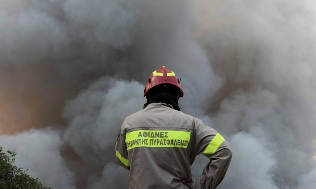 Πυροσβεστική: Γι' αυτούς τους λόγους εξαπλώθηκε αστραπιαία η φωτιά στον Κάλαμο