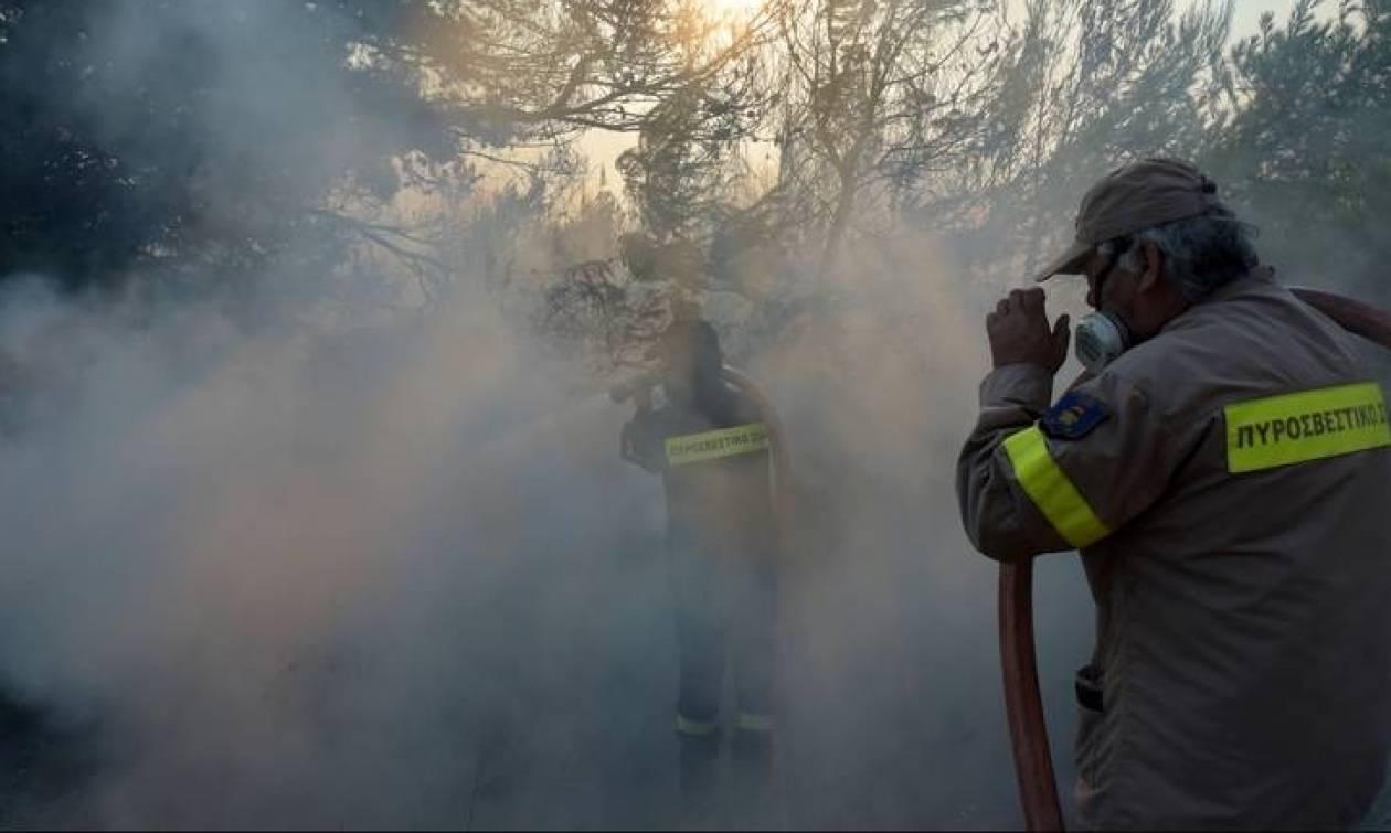 Πύρινη κόλαση στη Ζάκυνθο - Συνεχείς οι αναζωπυρώσεις