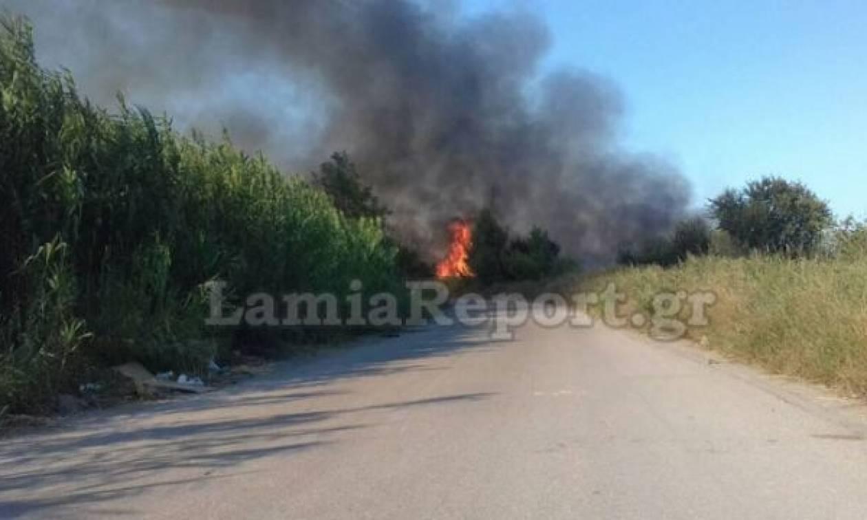 Φωτιά Τώρα: Νέα πυρκαγιά έξω από τα Καμένα Βούρλα