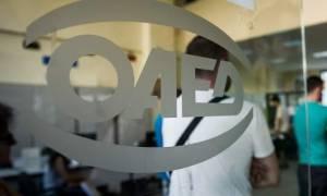 ΟΑΕΔ: Έως 21/8 ηλεκτρονικά οι αιτήσεις για 1.135 προσλήψεις