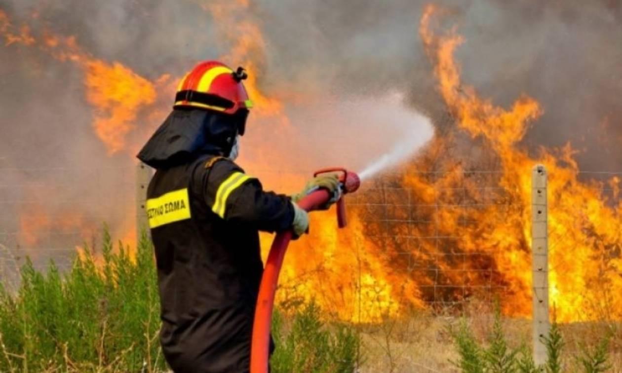 Θεσσαλονίκη: Υπό μερικό έλεγχο η φωτιά στο Μεσαίο και στο Πετρωτό